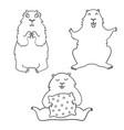 cheerful cool cartoon groundhog groundhog day vector image