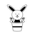 cute rabbit or bunny coming out of magician hat vector image