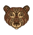 Head bear Ethnic patterns Hand drawn vector image