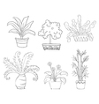 Six different kinds of plants vector image