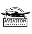 monochrome with airplane vector image