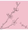 Oriental cherry vector image