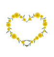 Beautiful Yellow Daisy Flowers in Heart Shape vector image