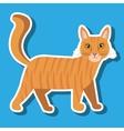 cute cat design vector image
