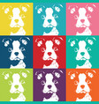 boston terrior color pattern vector image