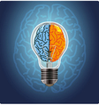 Symbol of idea with the brain shape left and right vector image