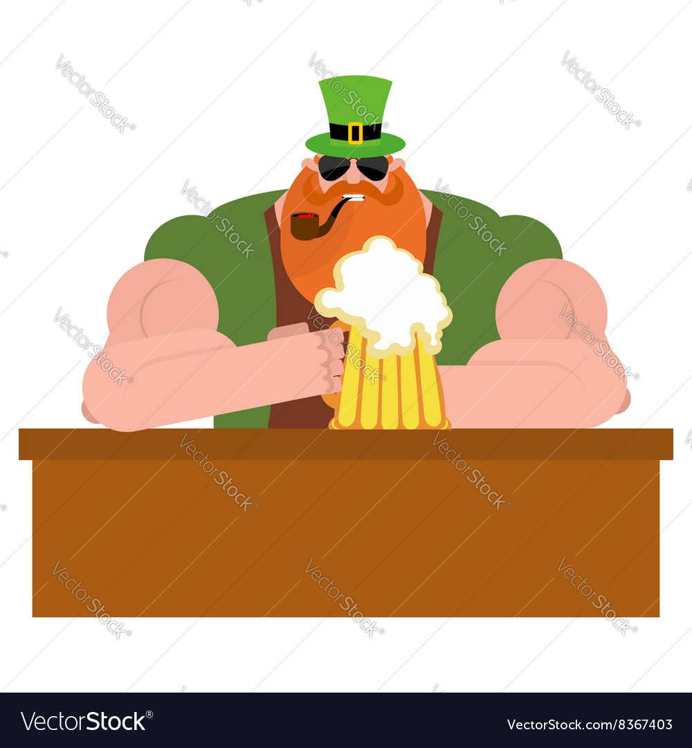 Leprechaun drinking beer big and serious vector