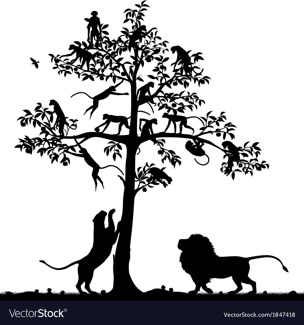Monkeys and lions vector
