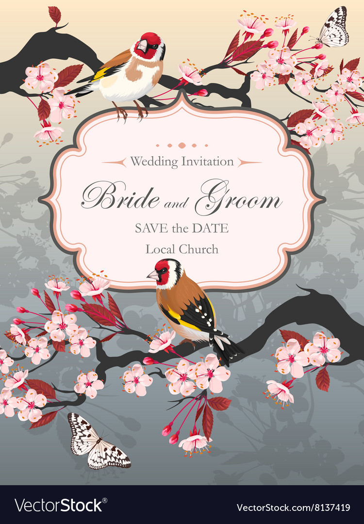 Vintage wedding card with blooming cherry vector