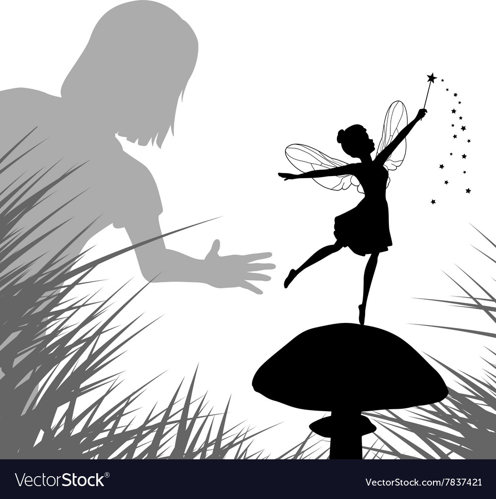 Fairy discovery vector