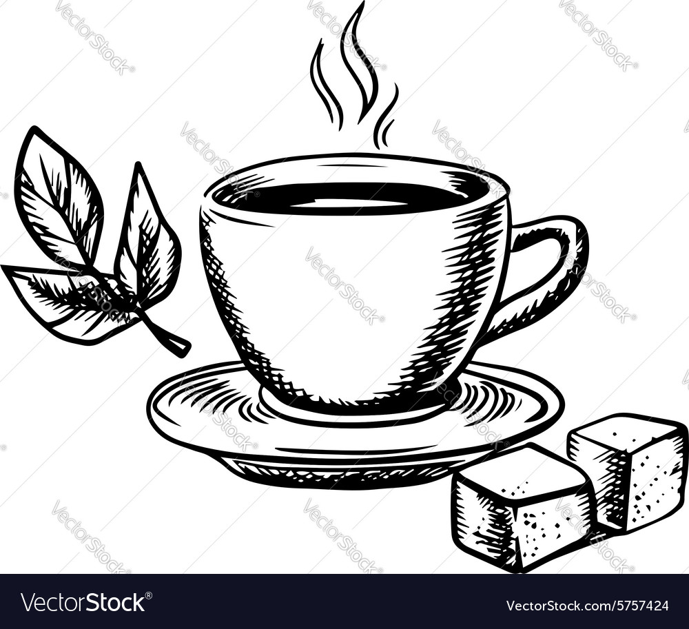 Tea cup with sugar and mint leaves vector