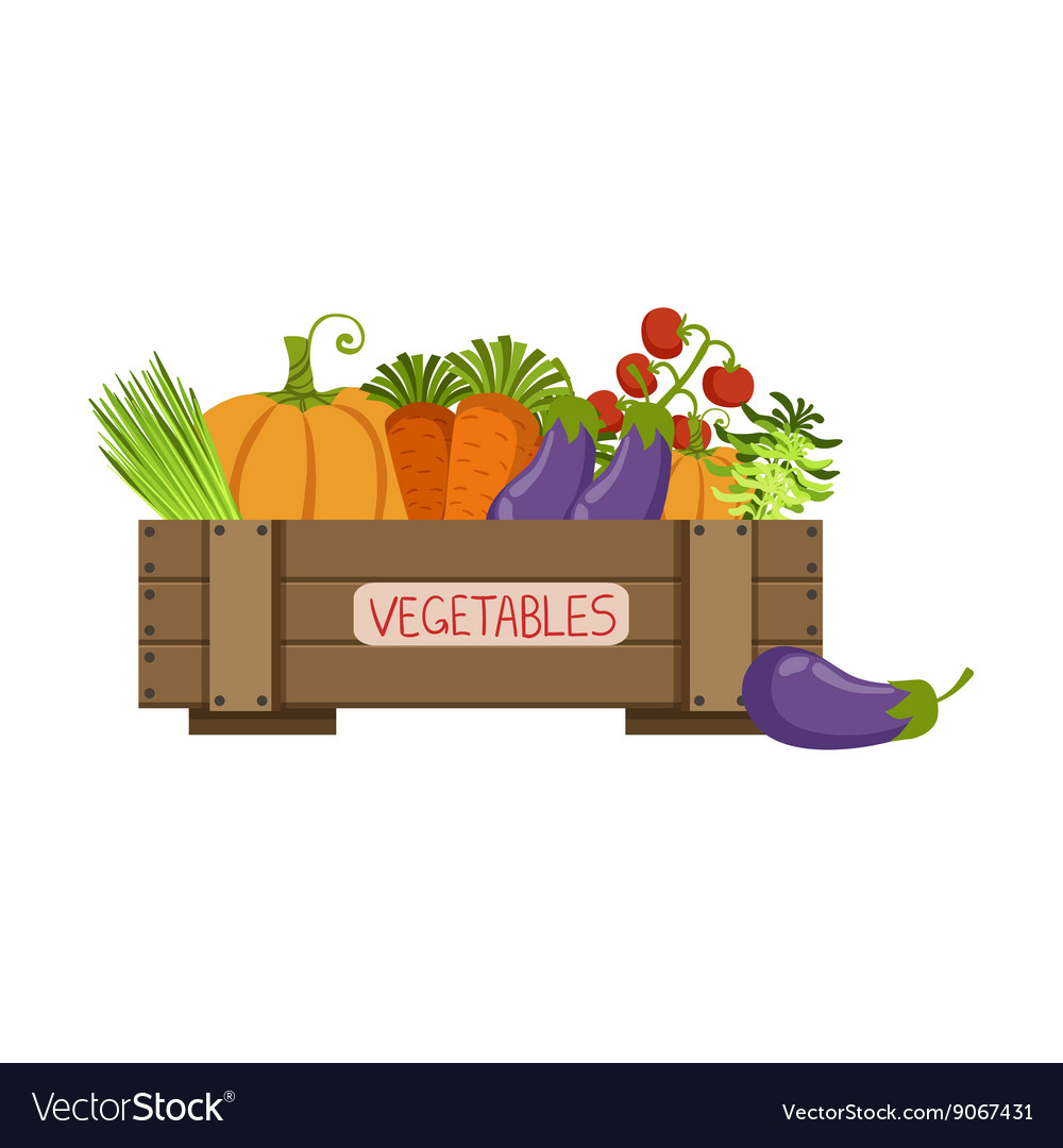 Full crate of fresh vegetables vector