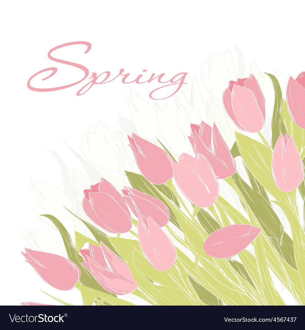 Card with tulip flowers vector