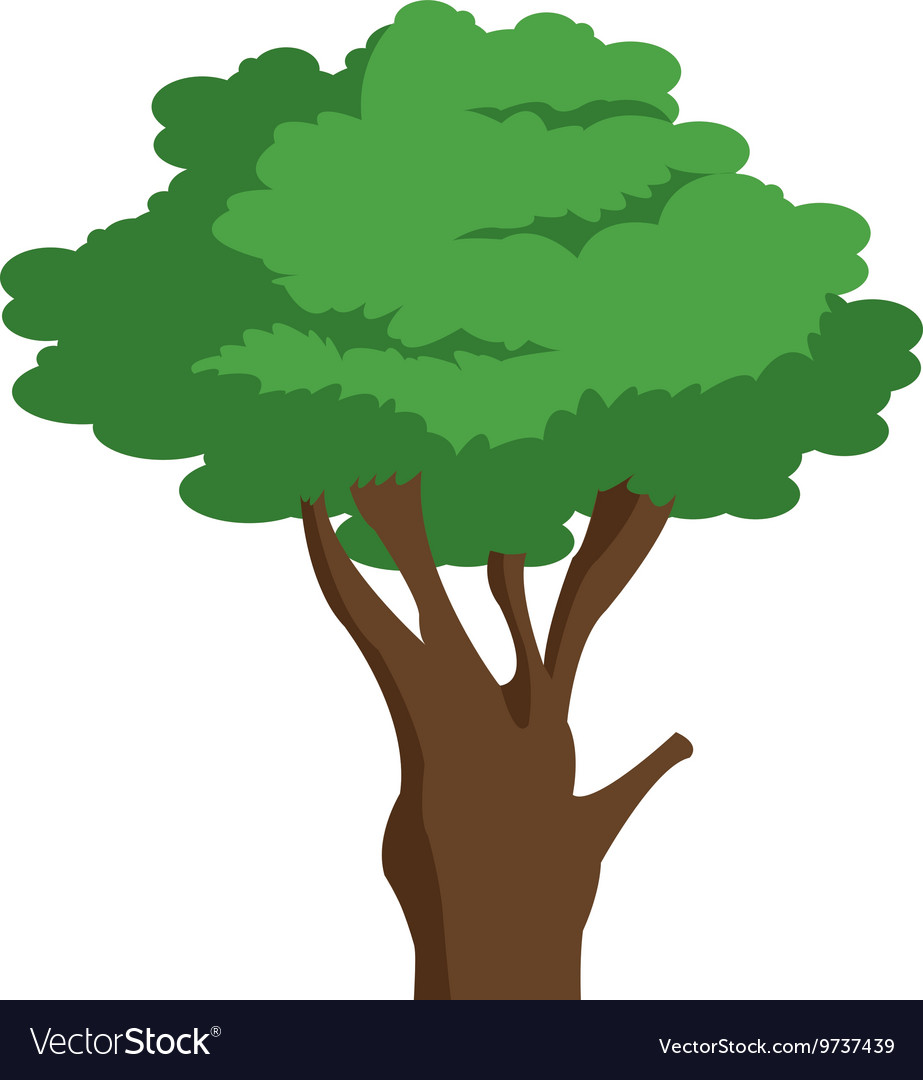 Single tree icon vector