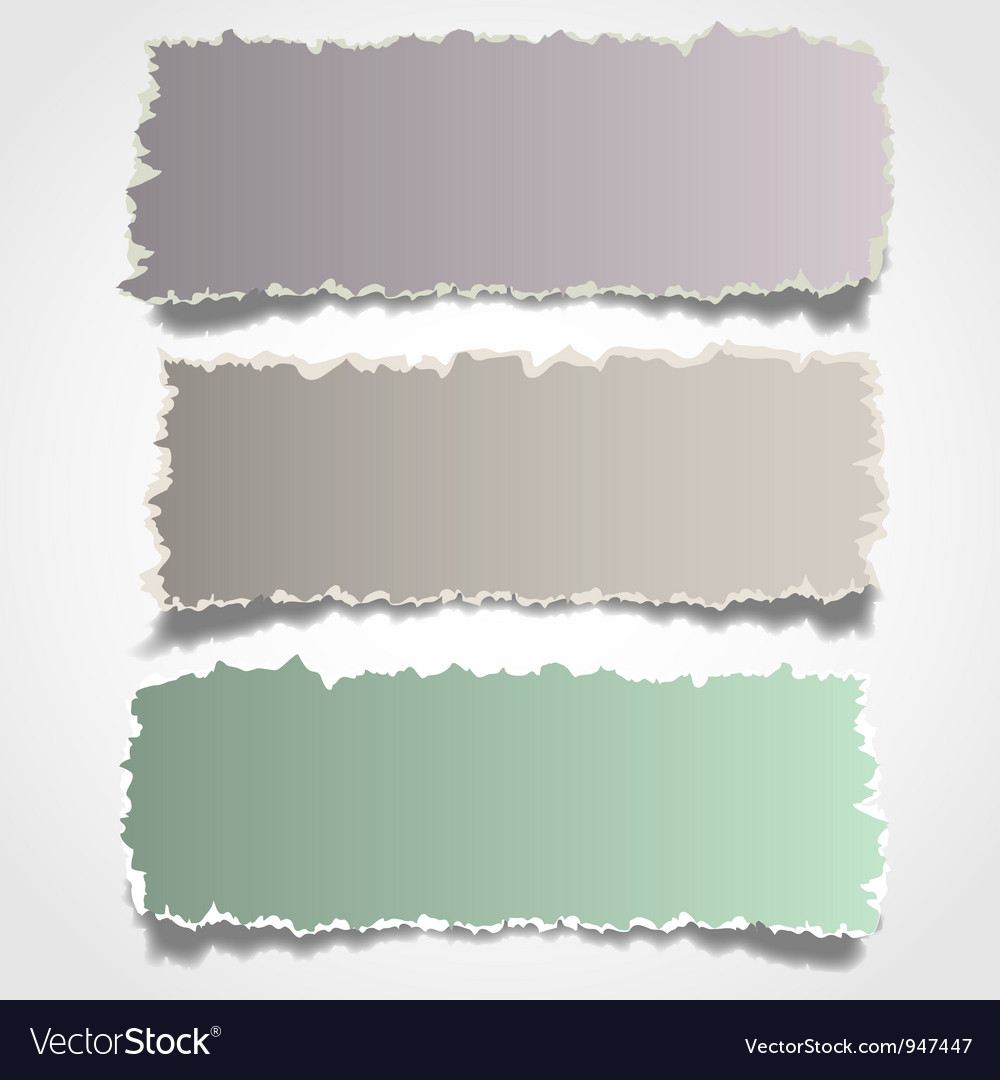 Three realistic torn paper banners vector
