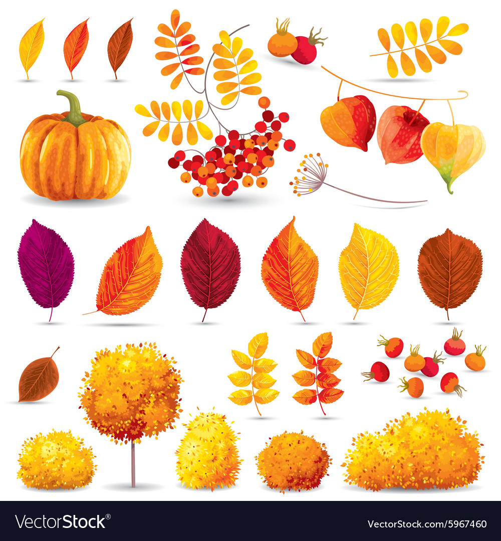 Autumn set 2 vector