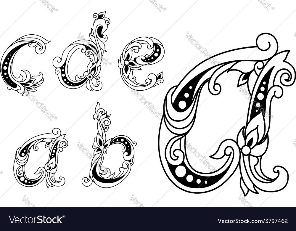 Calligraphic floral lower case alphabet letters vector