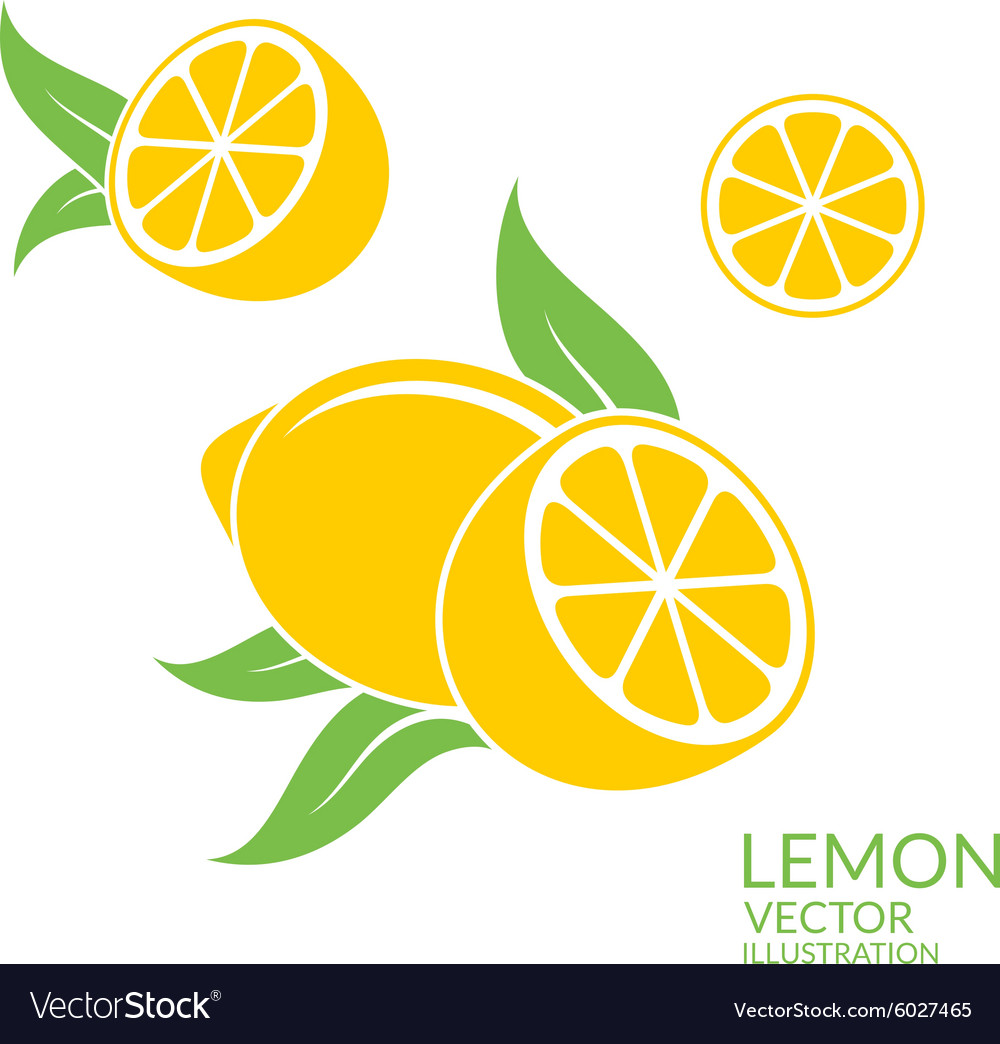 Lemon isolated fruit on white background vector