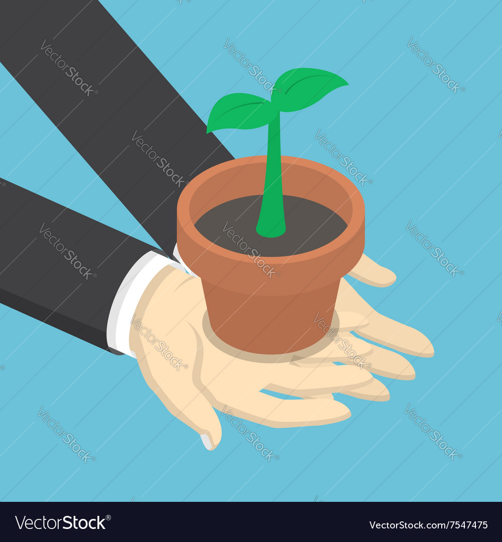 Isometric businessman holding sprout vector