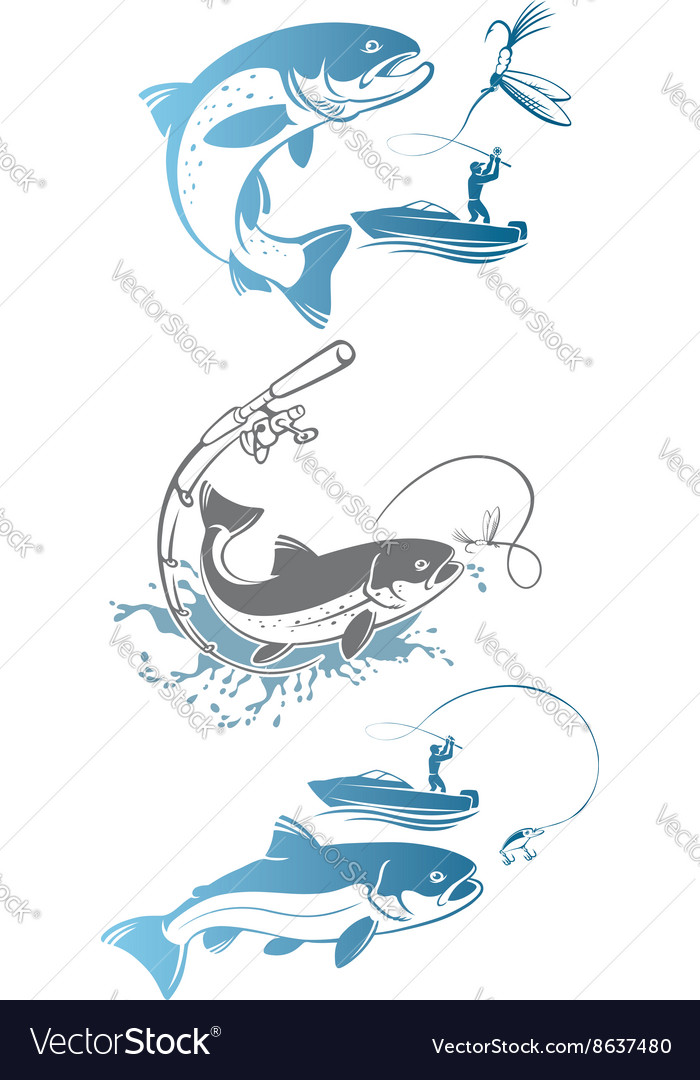 Fishing trout vector
