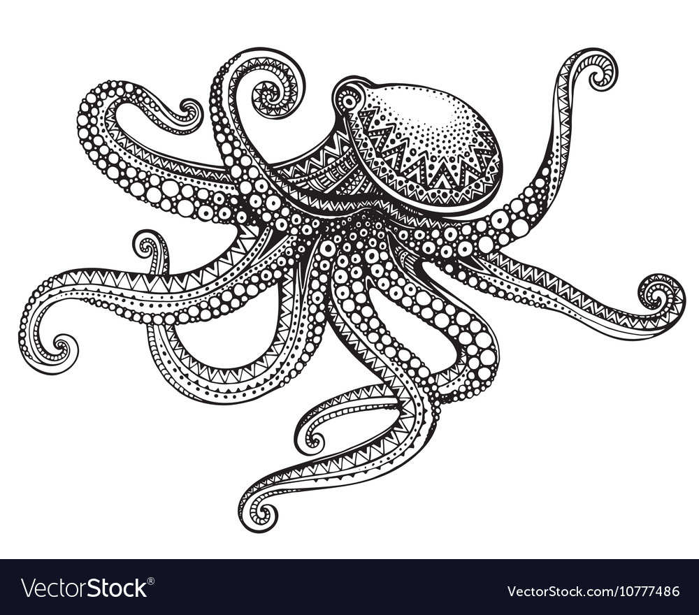 Hand drawn octopus in graphic ornate style vector