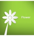 Spring flowers on green background vector image vector image