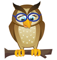 owl on branch vector image