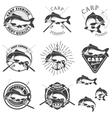 Set of carp fishing labels Design elements for vector image