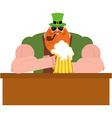 Leprechaun drinking beer Big and serious vector image