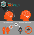 Pregnant Women with baby microcephaly and Zika vector image