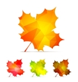 Geometric Autumn Leaves vector image
