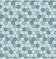 Seamless pattern with hexagon shapes vector image