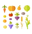 Set of Fruits  Vegetables vector image