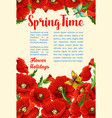 springtime poster of poppy flowers bunch vector image
