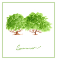 green summer tree with many leaves watercolor vector image