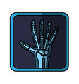 x-rays medical isolated icon vector image