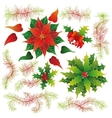 Christmas set of plants with flowers vector image