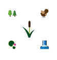 flat icon ecology set of cattail lotus cascade vector image