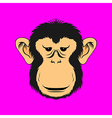 Monkey face print vector image