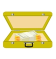 Valise with money vector image