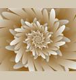 abstract digital floral design background vector image