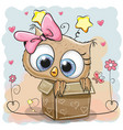 cute owl in a box vector image