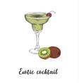 skech cocktail kiwi sketch cocktails vector image