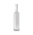 VodkaBottle vector image