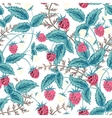 Seamless raspberry pattern Cute hand drawing vector image