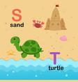 alphabet letter s-sand t-turtle vector image