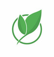 Ecology logo abstract eco green leaf symbol icon vector image