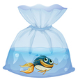 A fish inside a plastic pouch vector image