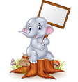 Cute baby elephant holding blank sign on tree stum vector image vector image