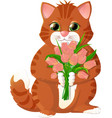 ginger kitten with pink tulips vector image